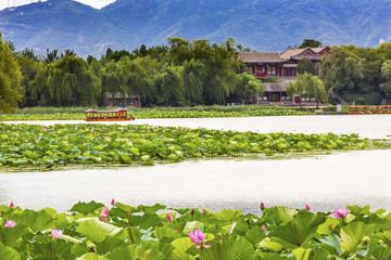 Lotus Garden Boat Buildings Summer Palace Beijing China