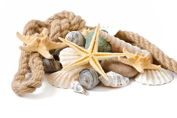 starfish, seashells and stones isolated on white background