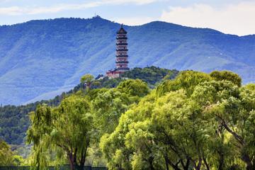 Yue Feng Pagoda Willow Trees Summer Palace Beijing China