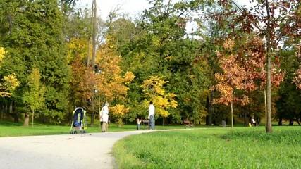 Autumn park - people walking - fallen leaves