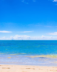 In a Sunny Paradise Shore Landscape
