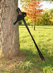 Nordic walking on the autumn park. Active and healthy lifestyle.