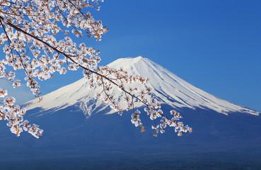 Mount Fuji, view from Lake Kawaguchiko