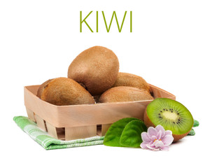 kiwi isolated