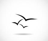 Seagull, sea mew icon vector poster