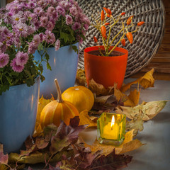 Pumpkin and chrysanthemum  next to a lit candle before
