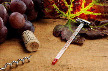 Tools for oenology