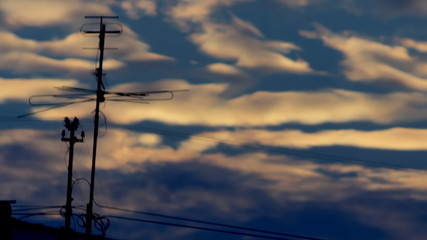 silhouette of TV antenna against the background of a sunset