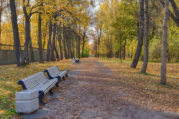 autumn park with benches