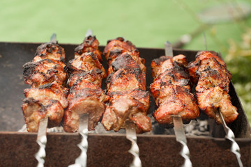 Appetizing fresh meat shish kebab (shashlik)