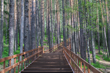 Wooden stairs in landscape park Stolby, near Krasnoyarsk, Russia