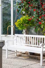 green house - Gewächshaus mit weißer Holzbank