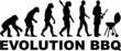 Barbecue Grill Evolution - 72640898