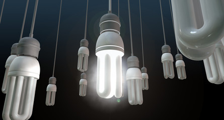 Leadership Hanging Lightbulb
