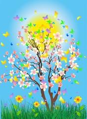 wiosenne drzewo,