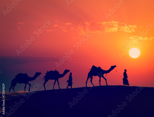 Two cameleers with camels in dunes of Thar deser - 72654629