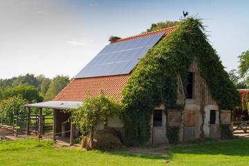 Stallanlage eines Bauernhofes mit ökologischer Landwirtschaft