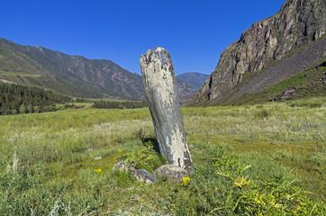 Menhir Stone. Altai, Russia.