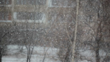 View of snowing