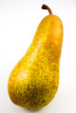 abate Fetel, typical Italian pear poster