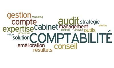 Nuage de mot : Comptabilité