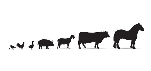 Frise-animaux de la ferme