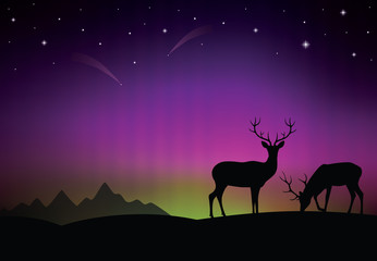The aurora with a deers in the foreground.
