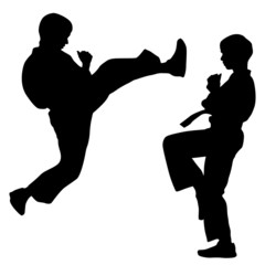 black silhouettes of karate. Sport vector illustration.
