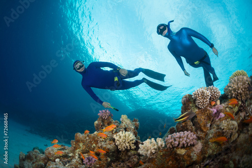 Foto op Canvas Duiken Freedivers