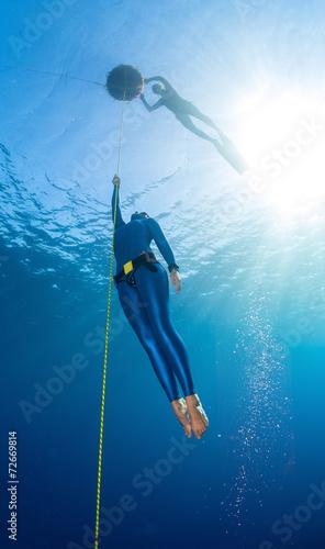 Freediver - 72669814