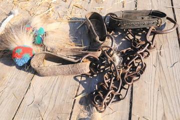 attrezzatura catena per bovini