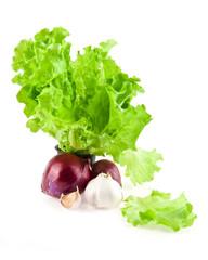 onion, garlic, lettuce