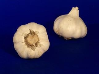 bocciolo d'aglio 1