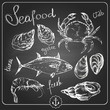 Hand drawn seafood - 72675254