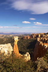 The symbol of Bryce-canyon