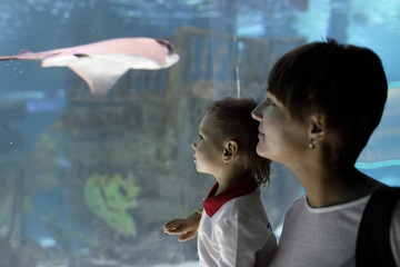 Mom and son looking at tropical fishes