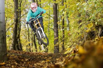 Mountainbiker rides in autumn forest