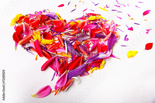heart of the concept of flower petals on a white background