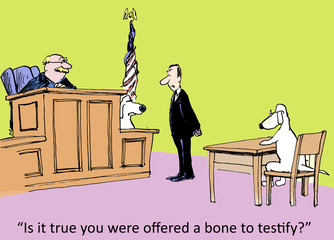 """Is it true you were offered a bone to testify?"""