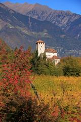 Lebenberg - Castel Monte Leone