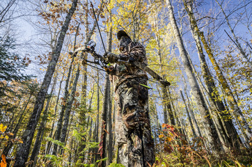 bow hunter standing