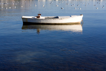 Small wooden boat in shallow sea with seagulls