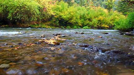 Cache River Utah Fall Scenery