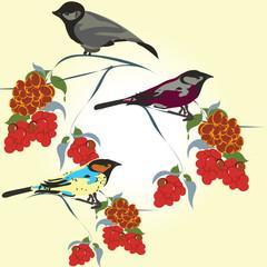 bird's pattern