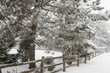 canvas print picture - Rural winter scene with fence