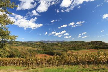 paesaggio collinare in autunno