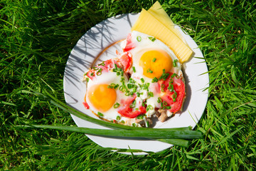 plate with eggs, green onions and tomatoes on the green grass