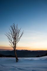Montagne concept zen