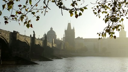 Charles bridge with tree - sunrise - Prague, Czech Republic