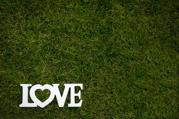 Love is in the air and on the green - Word LOVE lying in lush, w